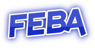 Febaaccessories.com